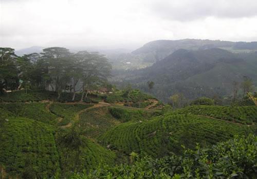 Új világörökségek: Sri Lanka