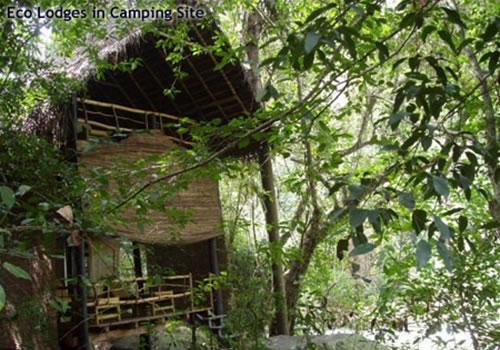 Eco Lodges Amp Hotels Sri Lanka